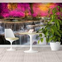Peintures murales avec des cascades dans la forêt