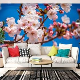 Papiers peints fleur de cerisier japonais