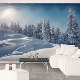 Papiers peints en vinyle coucher de soleil en hiver