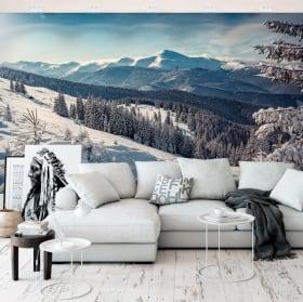 Papiers peints en vinyle paysage avec montagnes enneigées