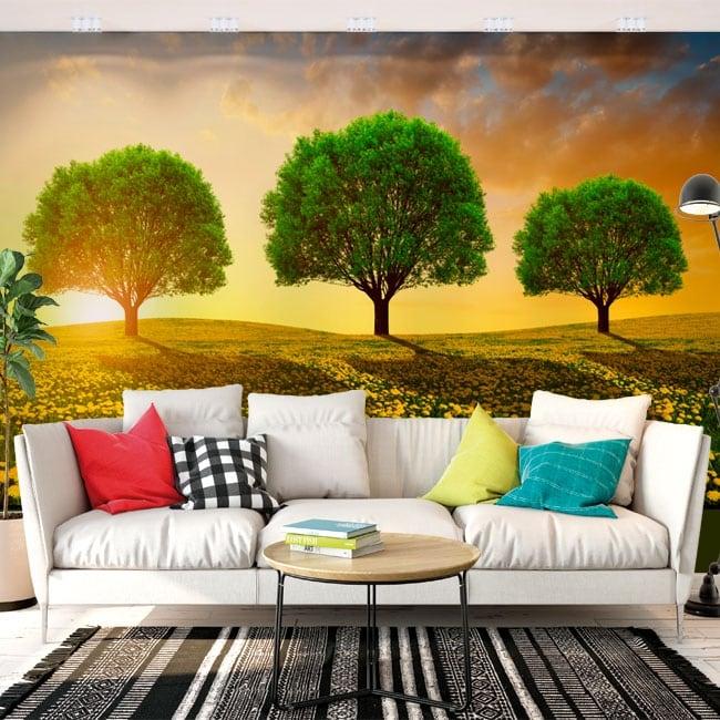 Papiers peints en vinyle arbres dans le pré