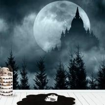 Papiers peints en vinyle pleine lune