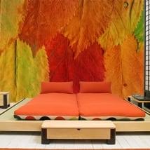 Peintures murales en vinyle feuilles colorées