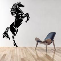 Vinyles décoratifs et autocollants cheval